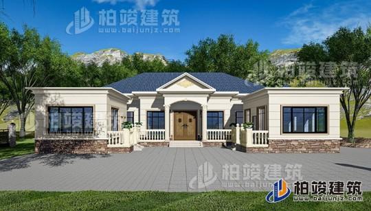 鄉村一層自建房設計圖 20X15米