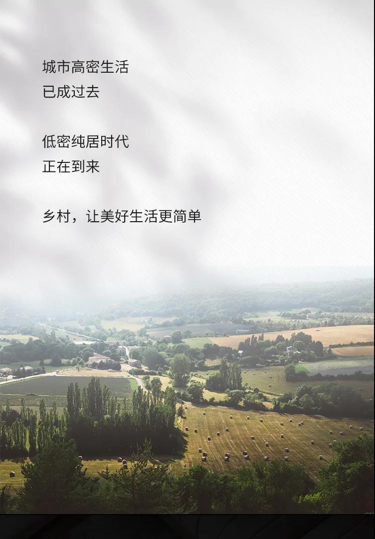凡尔赛-【外精装交付】